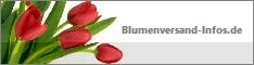 Blumenversandanbieter Vergleich