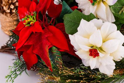 blumen zu weihnachten online versenden weihnachtsblumen und adventsgestecke g nstig online. Black Bedroom Furniture Sets. Home Design Ideas